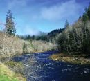 Siuslaw-River-And-Sakhalin-Island