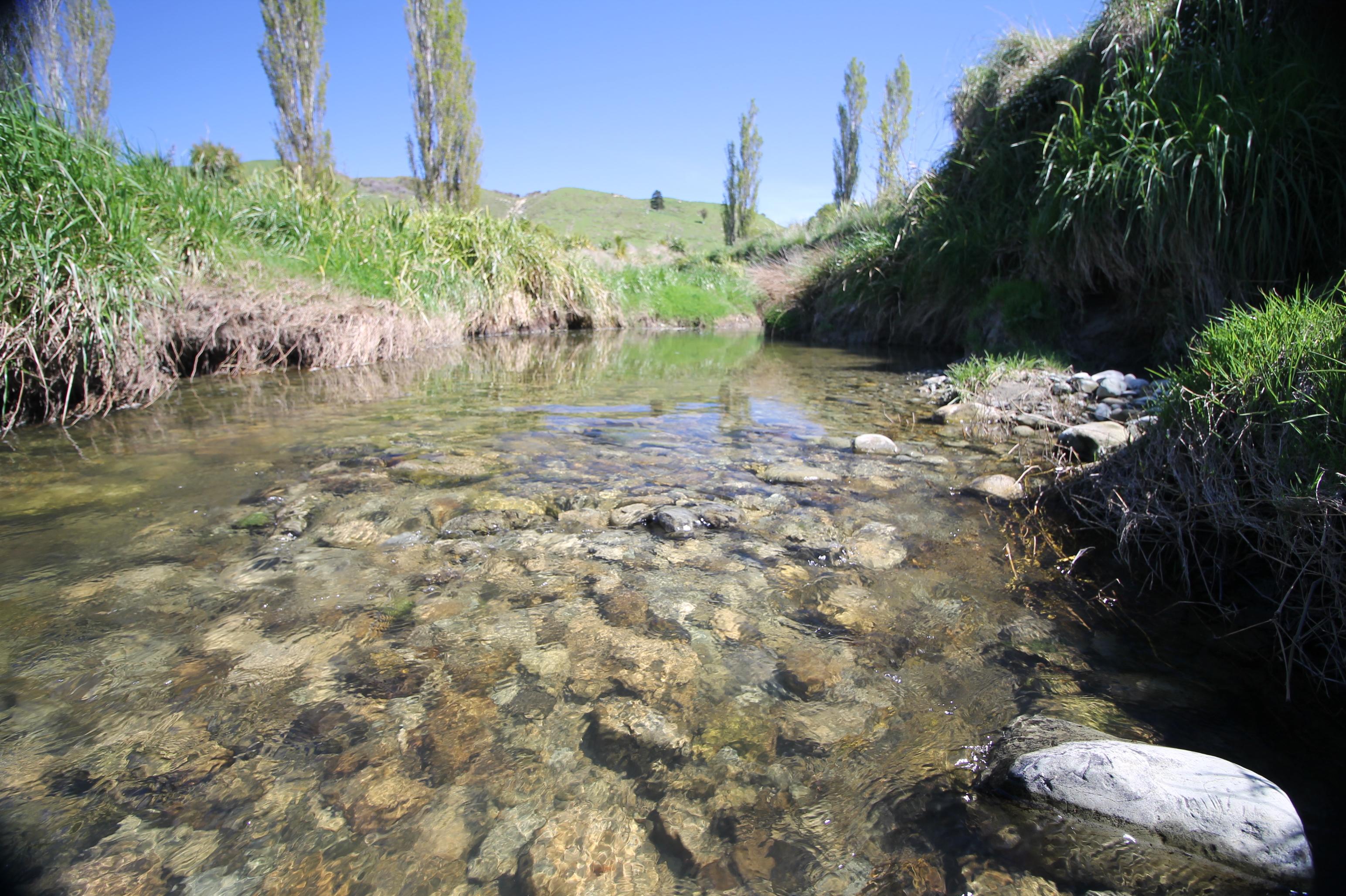 Australasia Riverprize – 2018