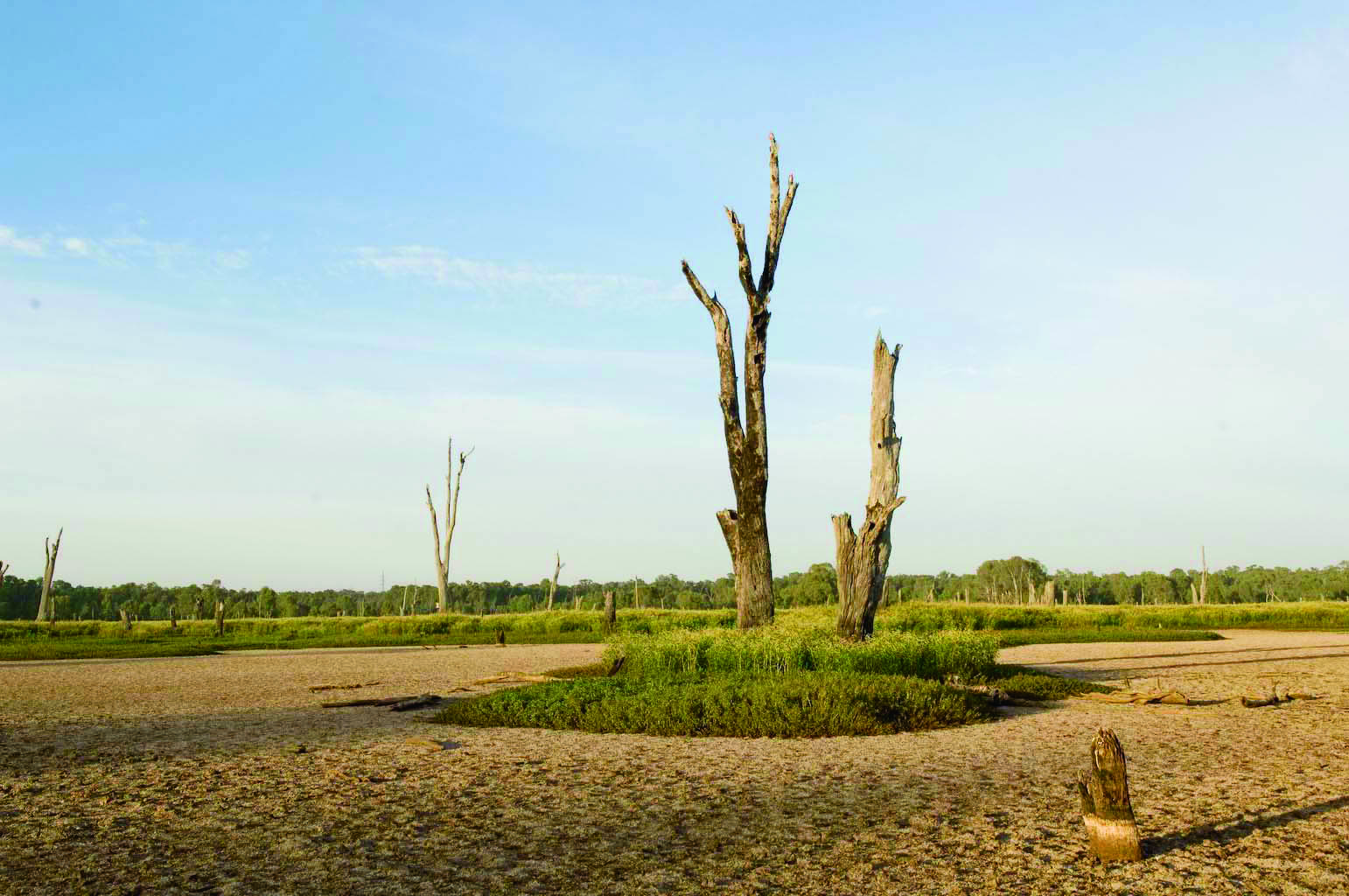 Australasia Riverprize – 2001